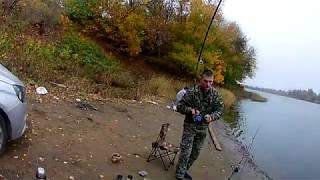 Рыбалка в волгограде и ее окрестностях базы