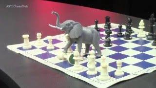 Opening Traps 1 Elephant Trap With Jonathan Schrantz