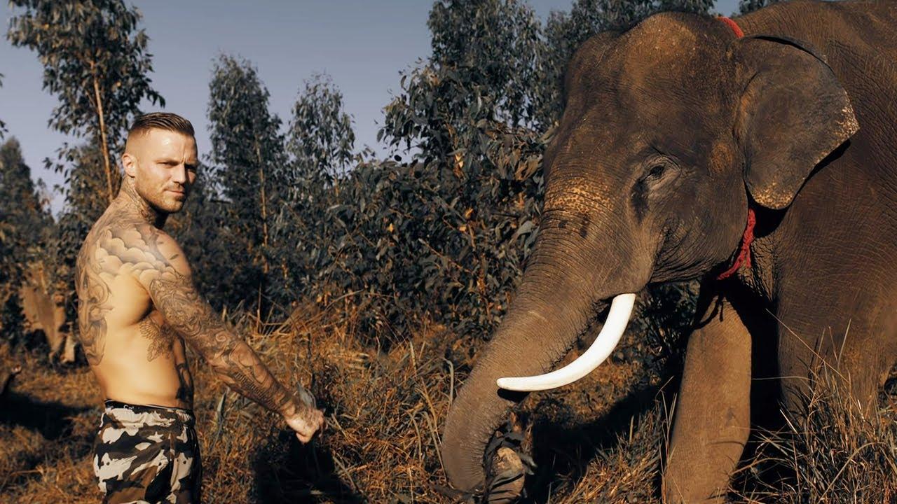 Kontra K – Kampfgeist 4