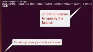Cloning a specific branch of a Git