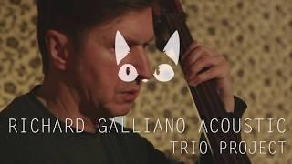 Geltonos Sofos Klubas | Richard Galliano Acoustic Trio Project 2018 02 11