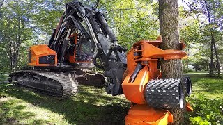 Dangerous Fast Destroy Big Tree Machine Working - Extreme Equipment Excavator Cutting Tree Machine