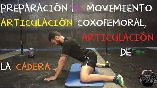 Preparación al movimiento para la articulación coxofemoral, articulación de la cadera.