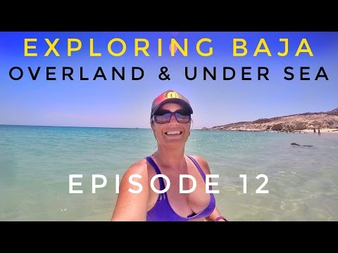 East Cape Baja Adventure: Snorkeling Cabo Pulmo & Waterfall at Canon De La Zorra (Travel Vlog) Ep.12