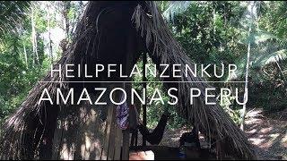 Amazonas Peru - Heilpflanzenkur
