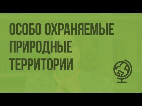 ООПТ (особо охраняемые природные территории). Видеоурок по географии 8 класс