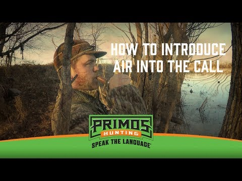 How to Present air Into a Duck Call video thumbnail