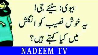 Urdu Funny Poetry & Quotes