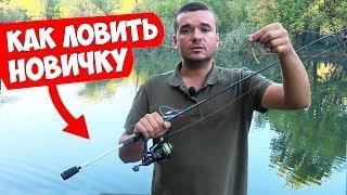 Прикормка для хищной рыбы летом