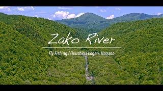 ZAKOGAWA RIVER 2017 -FLY FISHING-