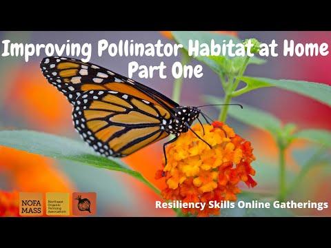 , title : 'Improving Pollinator Habitat at Home Part 1with Dan Jaffe