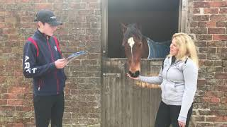 Teen Equine Interview