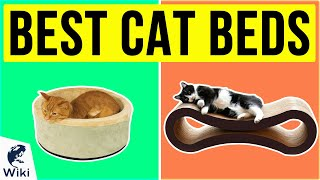 10 Best Cat Beds 2020