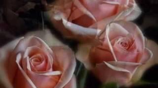 Tango to Evora Video