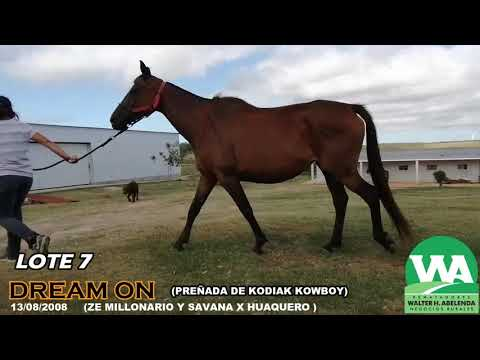 Lote DREAM ON