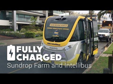 Sundrop Farm – Intellibus | Fully Charged
