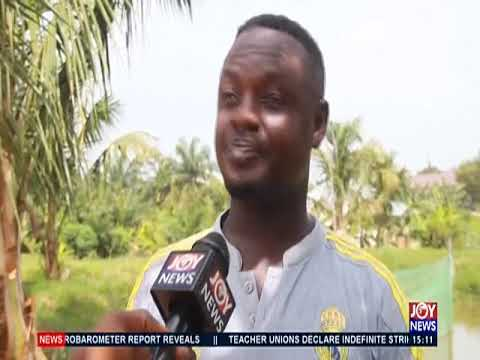 Farmers Day Edition A - The Pulse on JoyNews (6-12-19)