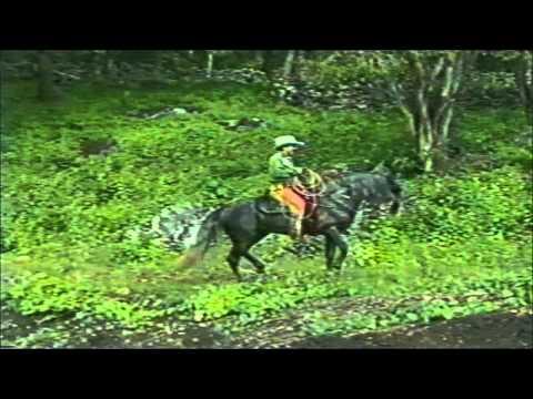 Cuatla Palanoya - Joan Sebastian (Video)