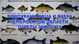 Платная рыбалка в кемеровской области