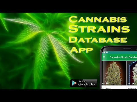 Cannabis Strains Database Mobile App -Genealogy,Lineage