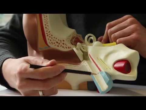 ALMAG zervikale Osteochondrose