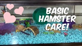 BASIC HAMSTER CARE! by Emma Lynne Sampson
