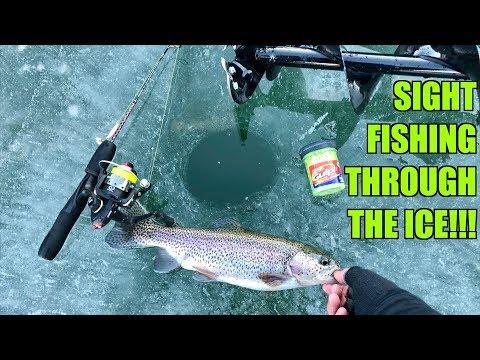 Isfiskeri efter regnbueørreder og solaborrer