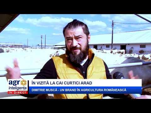 Un bărbat din Reșița care cauta femei căsătorite din Timișoara