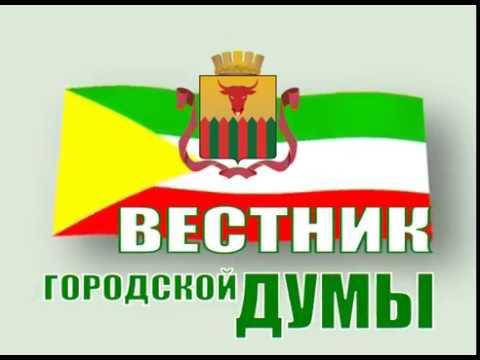 Вестник городской Думы. Выпуск 23 ноября
