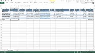 Microsoft Excel for Business Tutorial | Managing Customers, Vendors, and Employees - Part 1