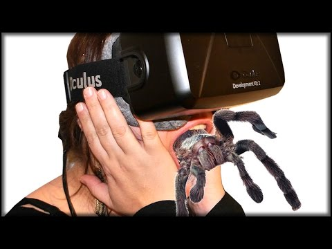 DON'T LET GO | Oculus Rift