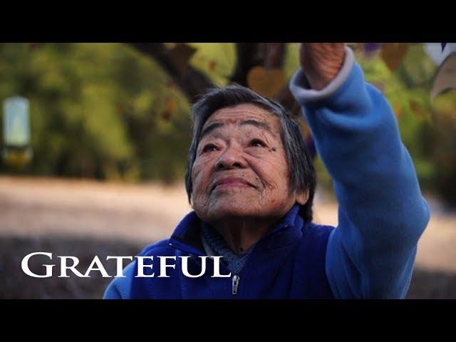 Video Pronunciation of grateful in English