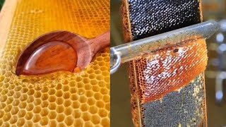 HONEYCOMB SLICING/EXTRACTING | ODDLY SATISFYING COMPILATION!!!