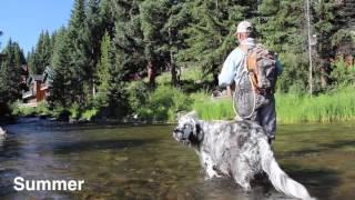 4 Seasons of Fly Fishing in Breckenridge