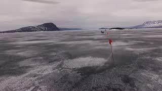 Lapplandsmästerskapet 2019