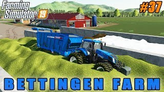 Forestry with new tree harvester | Farming simulator 19 | Upper