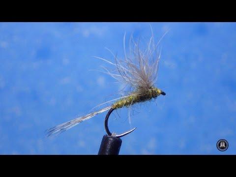 fly tying SNOWSHOE PLA RHODANI por Jorge G
