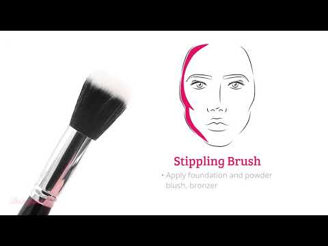 Boozyshop Boozyshop 6 pc Classic Starter Face Makeup Brush Set
