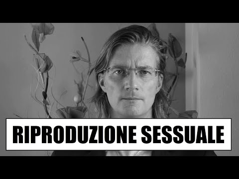 Gli adolescenti di video zoo sesso