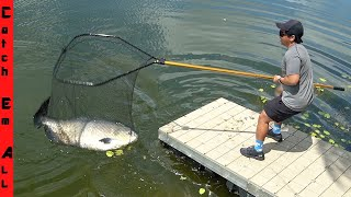 The DOCK MONSTER is FINALLY CAUGHT! **Longest Fish in Pond**