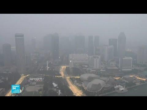 العرب اليوم - شاهد: ضباب سام يغطي جنوب شرق آسيا بسبب حرائق الغابات