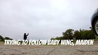 Follow baby wing FPV