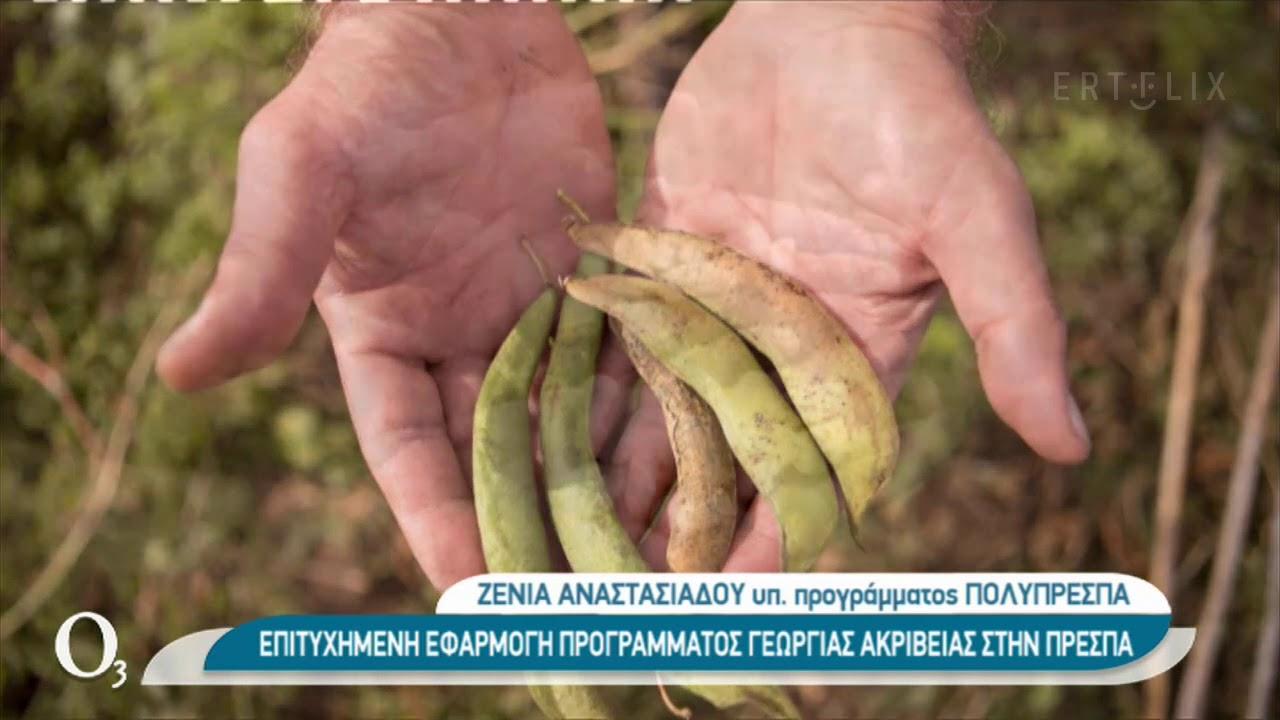 Γεωργία ακριβείας για την παραγωγή φασολιών στις Πρέσπες    23/12/2020   ΕΡΤ