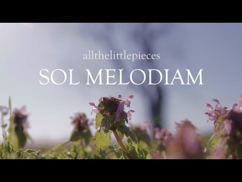 All the Little Pieces - Official Video for Sol Melodiam [HD]