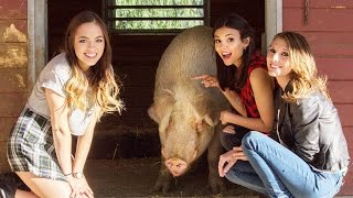 Виктория Джастис, Victoria Justice Makes Hilarious Animal Voices with Claudia Sulewski