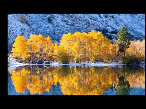 Вивальди Времена года Осень