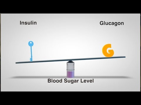 Kontra für Patienten mit Diabetes Essen