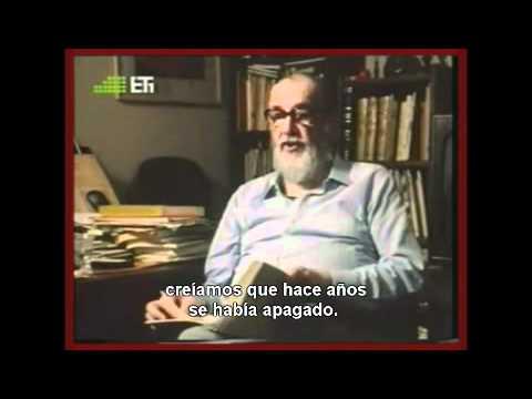 Nosotros - Babasónicos