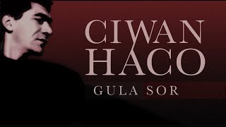 Ciwan Haco   Lê Lê Dînê 【Remastered】 (Official Audio)