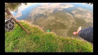 Как в ла2 ловли рыбы на резинку для